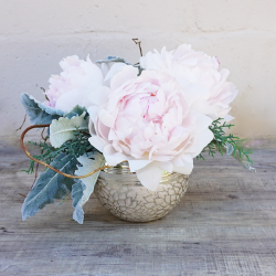 Elsie **Peonies out of season**